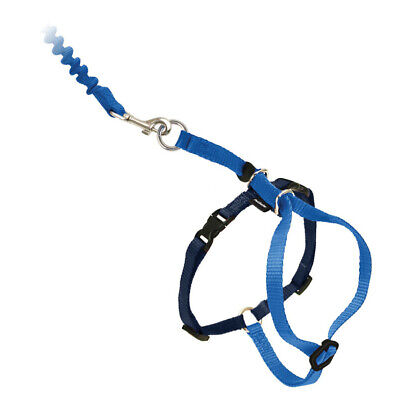 PetSafe/Premier Pet COME WITH ME KITTY Cat Harness and Bunge