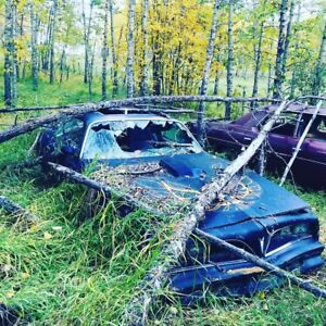 Need your dead car hauled? Or want that junk removed?