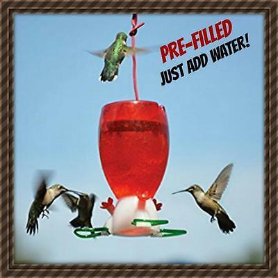 Filling Hummingbird Feeder - SONGBIRD ESSENTIALS BIG RED HUMMINGBIRD FEEDER SE952 10 OZ. PRE-FILLED! CUTE NEW
