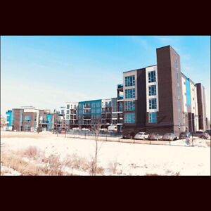 1 bed 1 bath condo for rent in Grimsby fully furnished