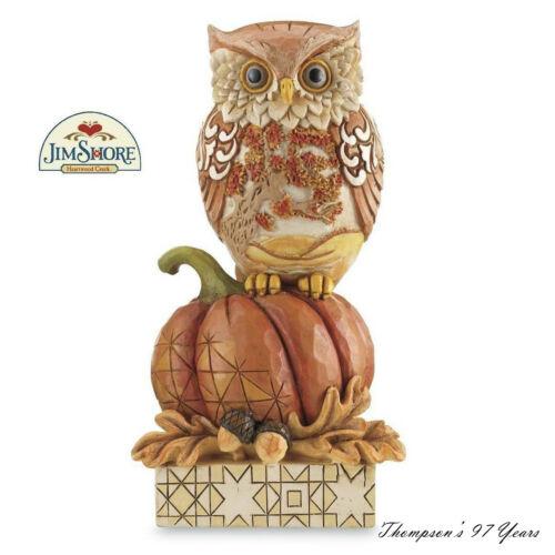 Enesco Jim Shore Whoo Loves Autumn Havest Owl on Pumpkin # 6001542 NIB