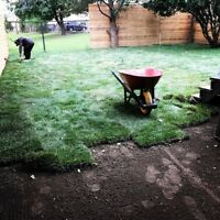 SOD INSTALLATION AND GRADING PICKERING/AJAX 647 783 6685