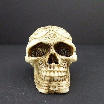 Skull Head Figurine Small Celtic Knot Halloween Decoration Statue New - Celtic Halloween Decorations