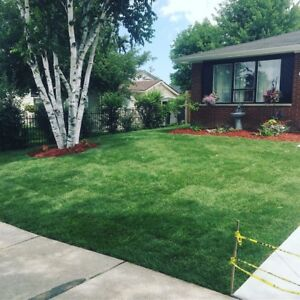 SOD INSTALLATION LOWEST PRICES $1.00 PER SQF !!!!