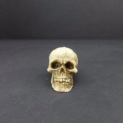 Mini Skull Head Figurine Celtic Knot 1.5