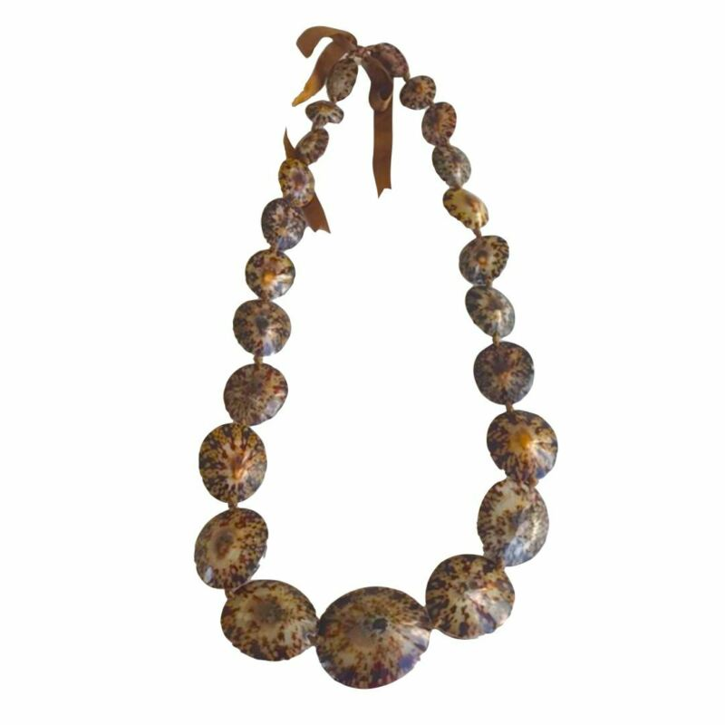 da Hawaiian Store Genuine Opihi Limpet Shell Lei Necklace