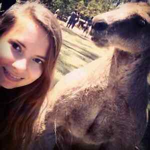 German girl looking for travelmate from Sydney to Melbourne Sydney City Inner Sydney Preview