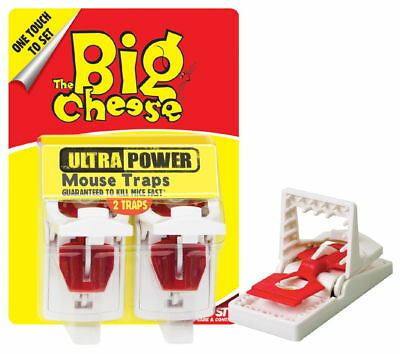 The Big Cheese Ultra Power Mouse Trap Pk2 (Pack of 6)