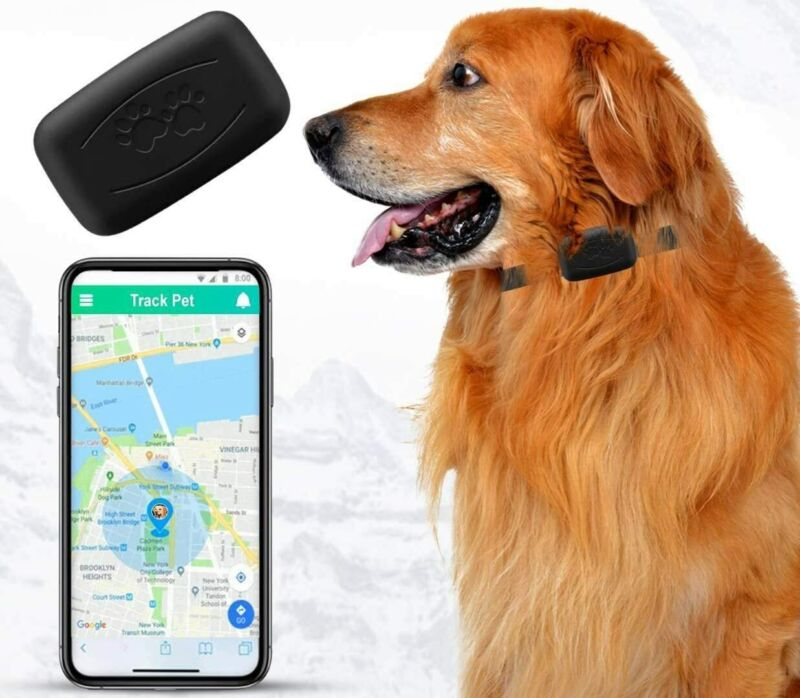 NACRL Pet GPS Tracker, No Monthly Fee, Free App, Real-Time Tracking Collar... - $101.49