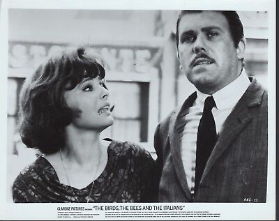 The Birds the Bees and the Italians 1967 8x10 black & white movie photo #32