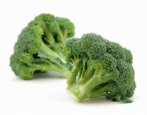 Broccoli-GREEN-SPROUTING-CALABRESE-100-Seeds-HEIRLOOM-ORGANIC