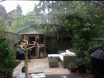 Pigeon Mesh | Pigeon Aviary | Pigeon Enclosure Mesh | Stainless Steel 15m