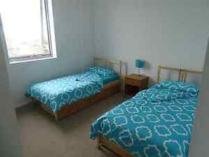 Bed available  (girl) Ashfield Ashfield Area Preview