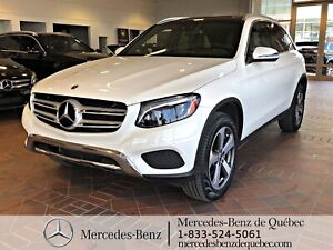 2017 Mercedes Benz GLC GLC 300 Premium, LED, Exclusive Pack