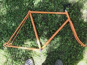 Orange Men's Large frame Albert Park Port Phillip Preview