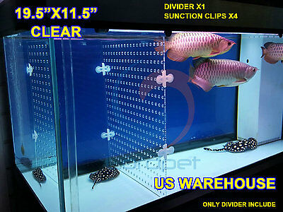"19.5""x11.5"" Aquarium 3mm Acrylic Divider With Holes 4PC Sunction Clip US Local"