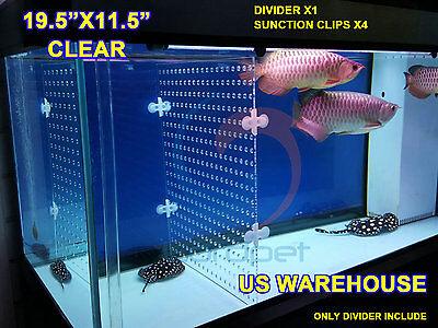 "19.5""x11.5"" Aquarium 3mm Acrylic Divider With Holes 4PC Sunction Clip US Local"