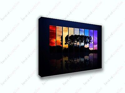 Abstract Colorful Background Tree Shade Canvas Print Art Home Decor Wall Art