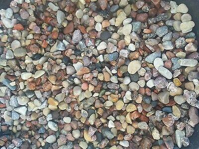 10  Lbs   Decorative Aquarium Gravel Stones & Pebbles for Fish Reptiles