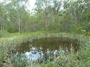 120 Acres -Native Forest Bushland Block Deep Creek Kempsey Area Preview
