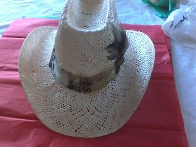 Cowboys Western Resistor Stagecoach Straw Hat
