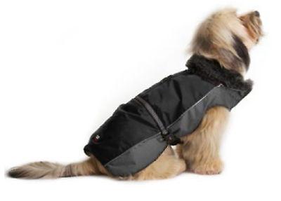 Dog Gone Smart Aspen Jackets Black / Grey 10'' Dog Gone Smart Jacket
