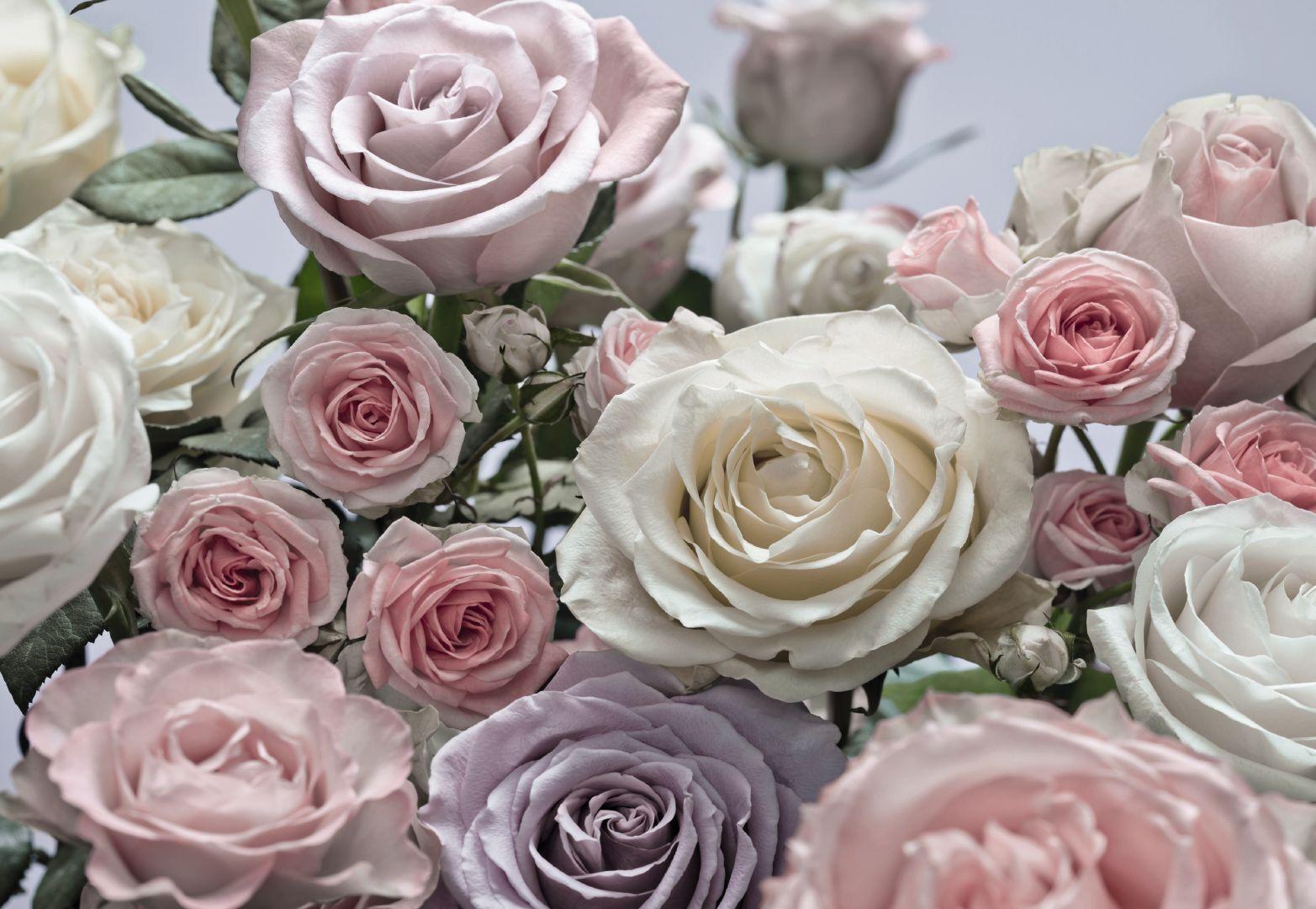 Photo Wall Mural Flowers | eBay
