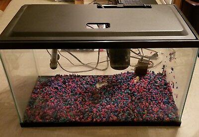 Aquarium Fish Tank 10 Gallon Led Light Aqua Culture Filter Terrarium