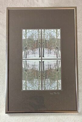 Abstract WINTER NATURE ART PHOTO - Framed Mirrored Image Collage - Artist Signed