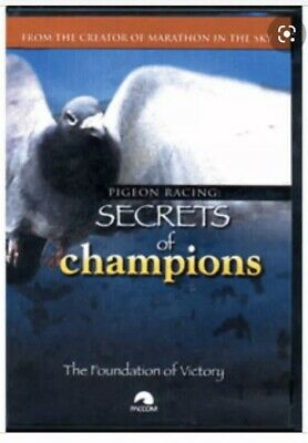 Secrets Of Champions Dvd The Foundation Of Victory , Racing Pigeon Dvd
