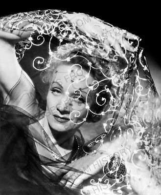 8x10 Print Marlene Dietrich Beautiful Portrait #232
