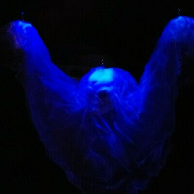 Gemmy Halloween Floating Skull Ghost Motion Animated Sound Spooky TESTED WORKS