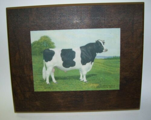 Holstein Friesian Association of America Print on Wood Cow Picture