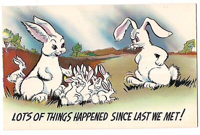 LOTS OF THINGS HAPPENED!  Multiplying BUNNY RABBITS Mom Dad BABIES Postcard for sale  Shipping to Canada