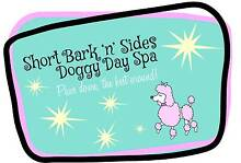 Short Bark 'n' Sides Doggy Day Spa Norlane Geelong City Preview
