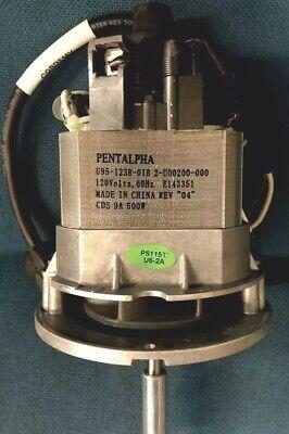 International Certified Pile Brush Vacuum Professional Vac Motor
