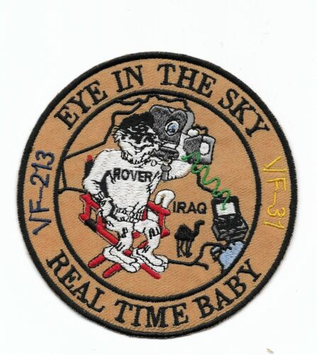 """F-14 Tomcat """"Eye In The Sky - Real Time Baby"""" patch"""