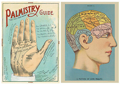 Phrenology & Palmistry - Palm reading  Posters 2-Pack Cavallini 20 x 28 Wrap