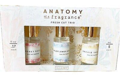 Anthropologie ILLUME Anatomy Of a Fragrance 3 Fresh Cut Trio Rollerball Parfum