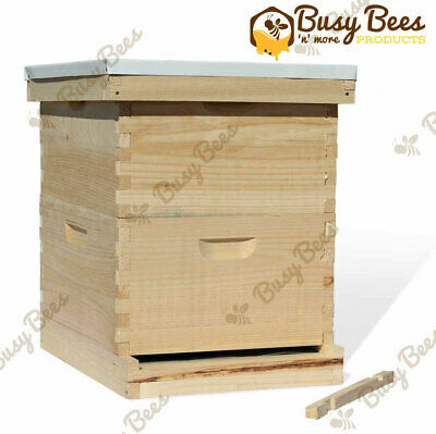 Red 1 X Beekeeping Bee Hive Tools Steel Scraper 9.5 Inch US Seller