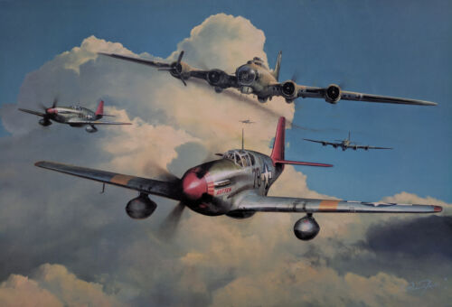 Red Tail Escort by Richard Taylor signed by 6 Tuskegee Airmen with Charles McGee