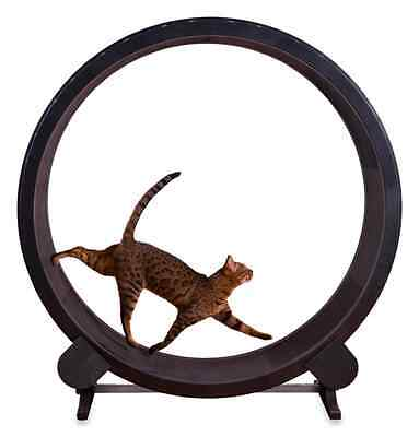 Cat Exercise Wheel Indoor Kitty Toy Treadmill Training Treadwheel in Black New  for sale  Shipping to South Africa