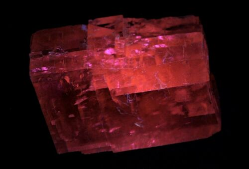 Deep red fluorescence! Iceland Spar 6-cm transparent crystal Chihuahua, Mexico