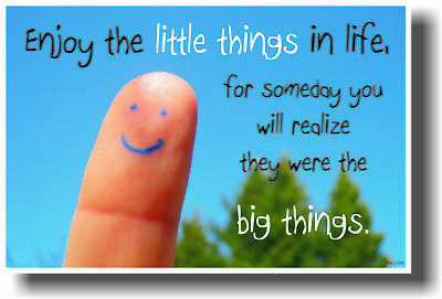 Enjoy the Little Things in Life - MOTIVATIONAL POSTER ()
