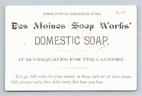 Des Moines Soap Works