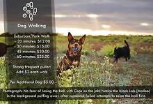 Dog Walker, GROOMER, Pet Sitter and More in One Modbury Heights Tea Tree Gully Area Preview