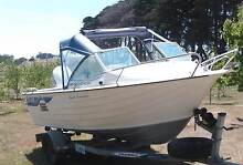 Aluminium Savage Runabout Pipers River George Town Area Preview