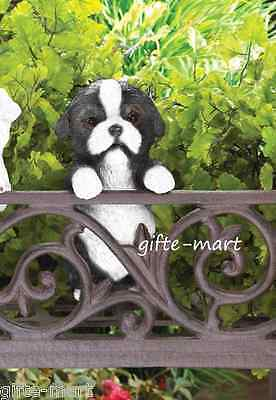 (BORDER COLLIE puppy dog climbing fence hanging outdoor garden statue patio yard)