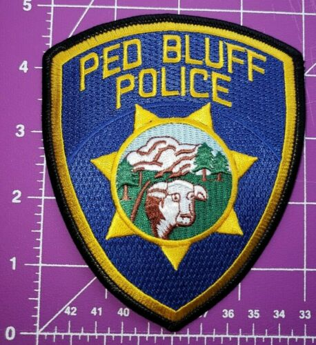 """Red Bluff California-""""Error"""" collectible shoulder patch"""