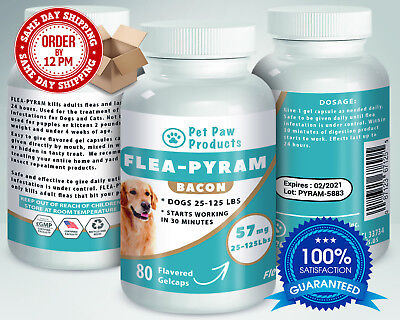 80 CAPSULES Flea Killer For DOGS 25-125Lbs 57 Mg BACON Flavored SAME DAY Ship!